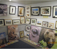 Picture Gallery & Framing